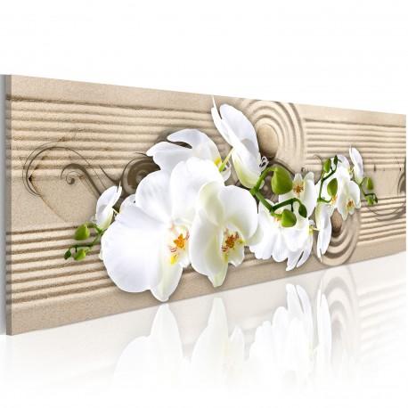 Tableau  Desert Flower