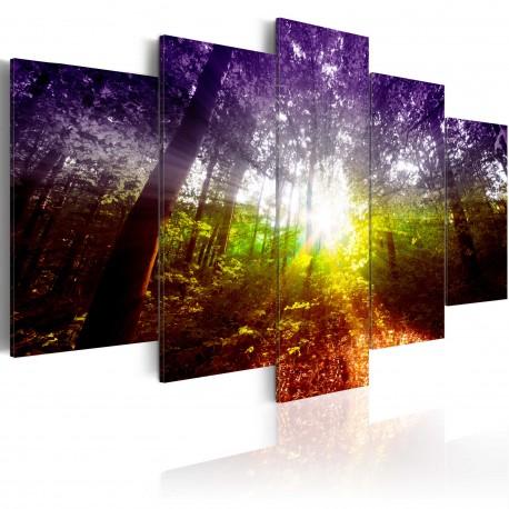 Tableau  Rainbow Forest