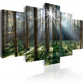 Tableau - Fairytale Forest