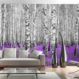 Papier peint - Purple asylum