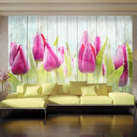 Papier peint - Tulips on white wood