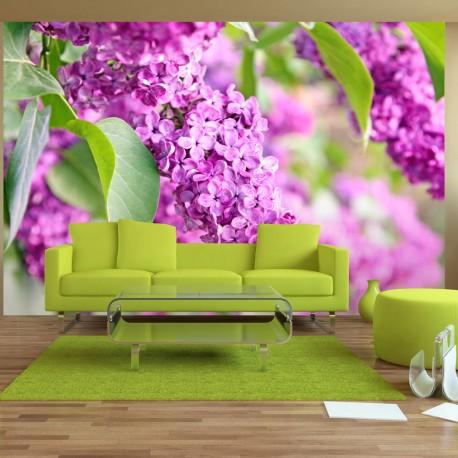 Papier peint  Lilac flowers