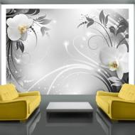 Papier peint  Orchids on silver