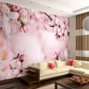 Papier peint - Spring Cherry Blossom