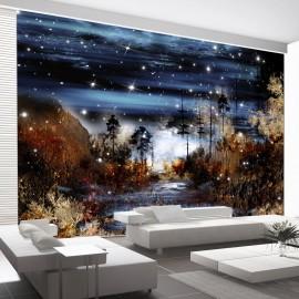 Papier peint - Magical forest